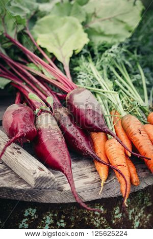 Red Beets and carrots farm products. Organic vegetables.