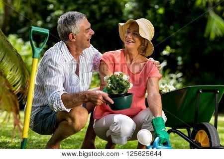Senior couple enjoying while holding flower pot in yard