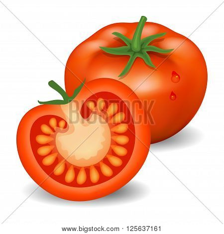 Fresh tomatoes. Red tomatoes. Natural vegetable food healthy organic food. Realistic vector illustration
