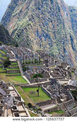 ancient terraces and ancient houses to Machu Picchu