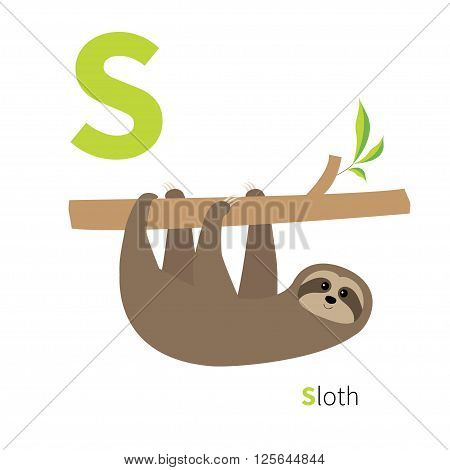 Letter S Sloth Zoo alphabet. English abc with cute animals Education cards for kids Isolated White background Flat design Vector illustration