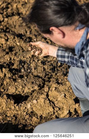 Farmer checking the soil on his arable land in his hand