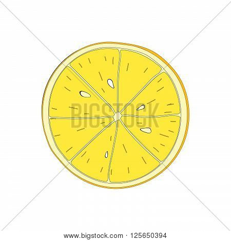 Lemon slice. Vector osilated symbol of fruit lemon.