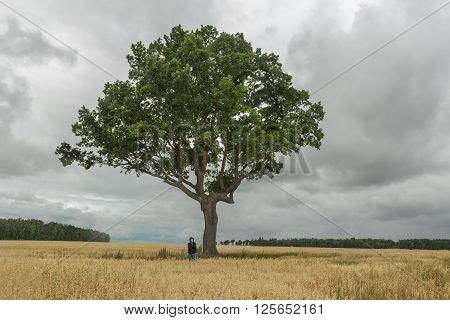 Teenage boy wearing black hooded sweatshirt and blue jeans is standing under huge branchy oak tree crown growing in oat farm field at stormy cloudscape background