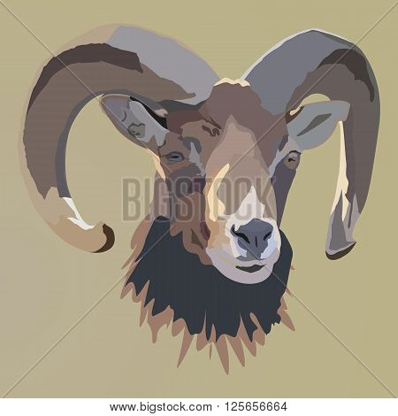 Sheep Portrait. Vector illustrated Portrait of  Ram or sheep on brown  background.