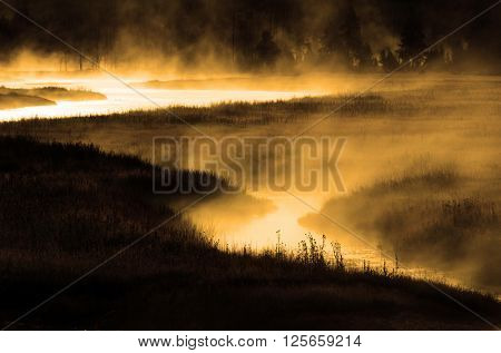 Misty river in the morning with riverbank forest trees