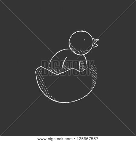Chick peeking out of egg shell. Drawn in chalk icon.