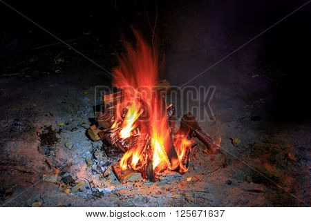 red hot flame of campfire in darkness