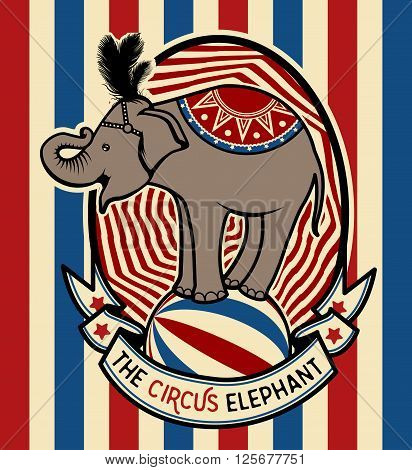 The Circus Elephant. Colorfull  collection. Vector illustration. Illustration of circus stars.