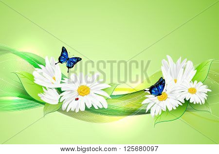 Natural Romantic Background With Flowers And Butterflies
