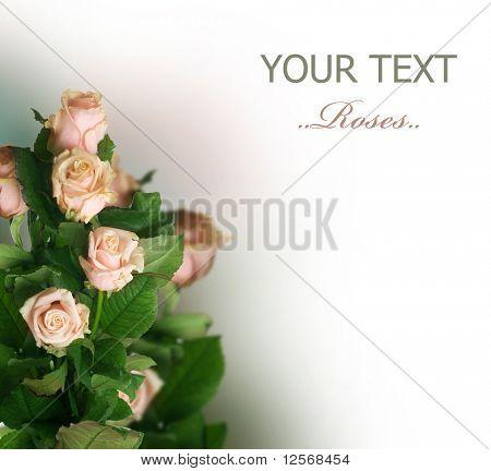 Roses Border.Sepia toned