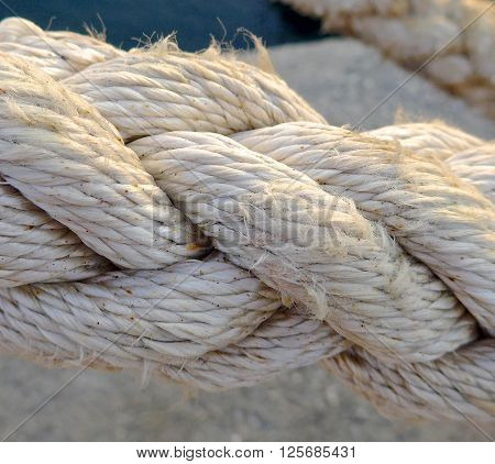 The close view of rope on the shore