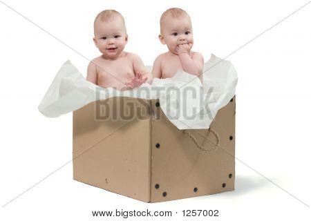 Dois gêmeos de bebê na caixa