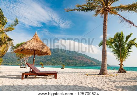 Empty wooden beach chairs on the beach with coconut trees
