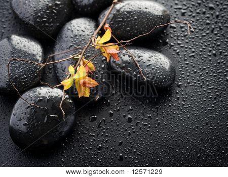Wet Zen Spa Stones over black