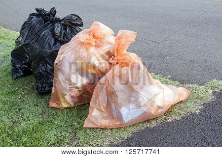 garbage and recycling bags lined up ready for collection