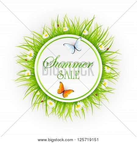 Summer sale on abstract background with round card, grass, ladybugs and butterflies, illustration.