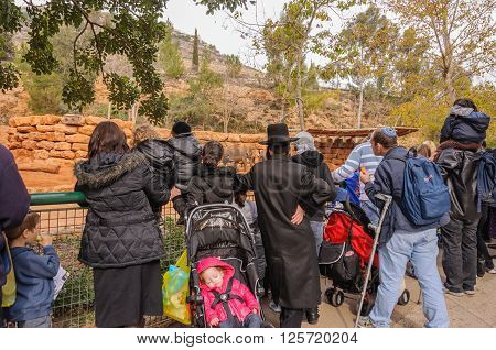 Jerusalem - December 21, 2011:  Orthodox families huddling at the fence of the enclosure to see the elephants in the Biblical  Zoo on December 21, 2011 in Jerusalem.