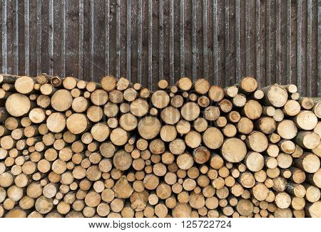 Woodpile of round tree trunks in front of the old board wall of a barn