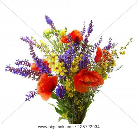 Colorful bouquet of red  poppies  and another  wildflowers (meadow sage, black mullein) isolated  on white.