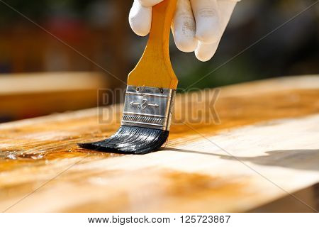 Painter holding a paintbrush over wooden surface protecting wood for exterior influences and weathering. Carpentry wood treatment hard at work home improvement do-it-yourself concept.