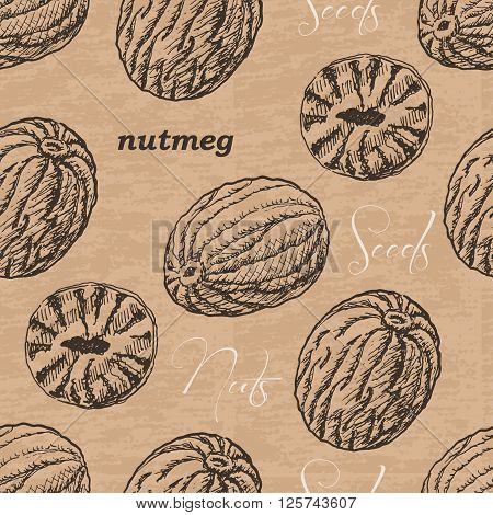 Seamless pattern with nutmeg on a vintage background. Vector  illustration for your design