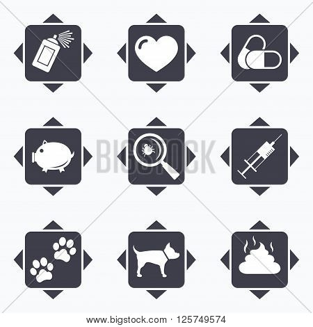 Icons with direction arrows. Veterinary, pets icons. Dog paws, syringe and magnifier signs. Pills, heart and feces symbols. Square buttons.