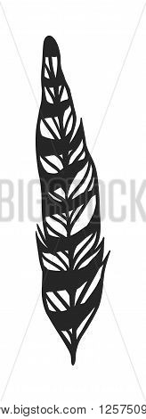 Hand drawn stylized boho feather black color and doodle tribal ornamental black feather. Feather isolated icon. Black feather nature bird. Decorative black feather doodle vintage art graphic vector.