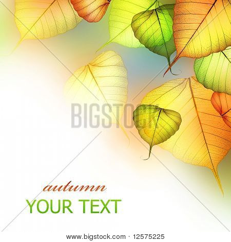 Autumn Leaves.Beautiful Abstract Fall Border
