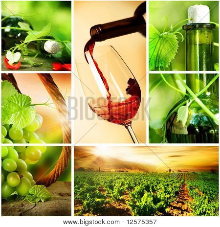 Wine.Beautiful uvas Collage