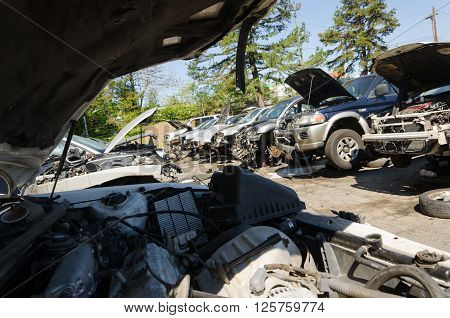 Charlotte, NC, United States - April 14, 2016: Man is looking for parts on a junk yard in a sunny day