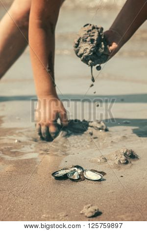 kid playing with sand and shells on beach on beautiful sunny day