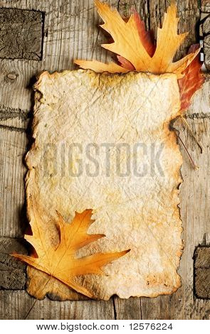 Autumn Leaves on the Old Paper sheet