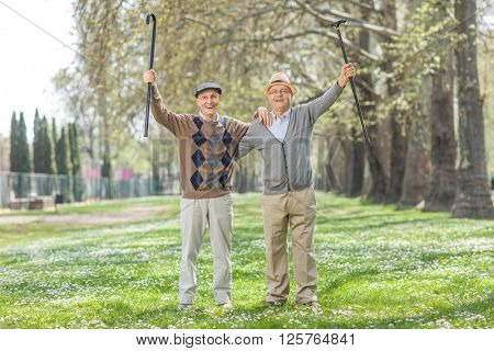 Two overjoyed senior gentlemen posing in a meadow in park and gesturing happiness on a beautiful spring day