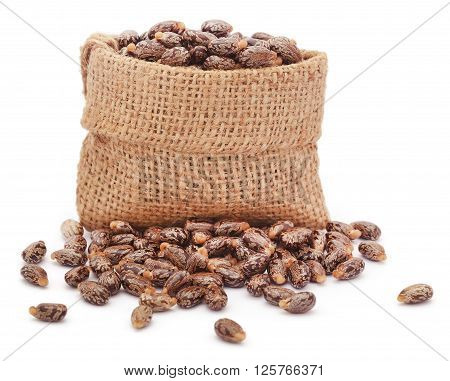 Castor beans in jute sack over white background