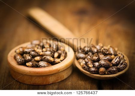 Castor beans in wooden spoon and bowl