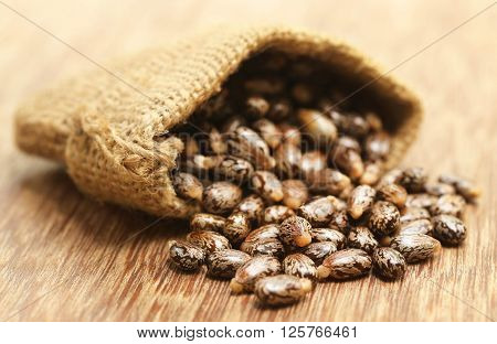 Castor beans in jute sack on wooden surface