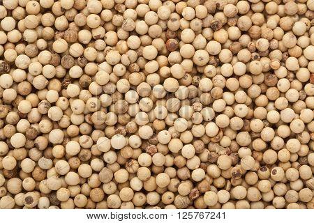 Closeup of a lot of white peppercorns
