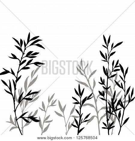thicket of branches with leaves, bamboo shoots, isolated hand drawn vector elements