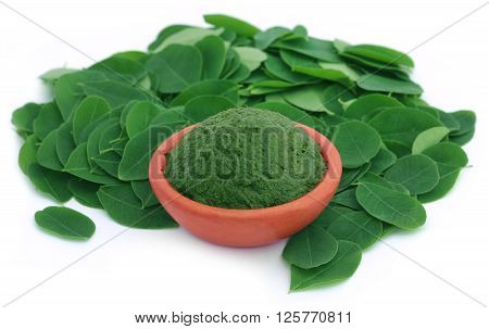 Edible moringa leaves with ground paste in a pottery over white background