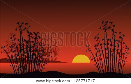 Bamboo on a background of a dawn and moon