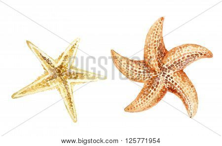 Set of hand painted watercolor starfishes isolated on white background.