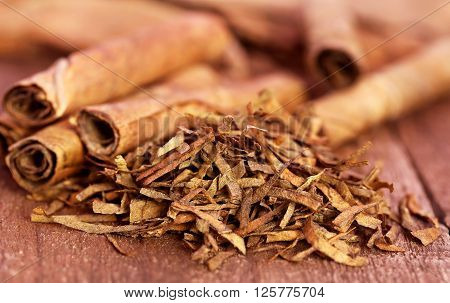 Close up of dry and rolled tobacco leaves