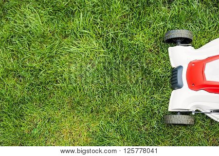 Lawn Mower Cutting Green Grass.