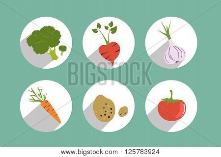Set of circle color vegetable icons. Flat vector design.