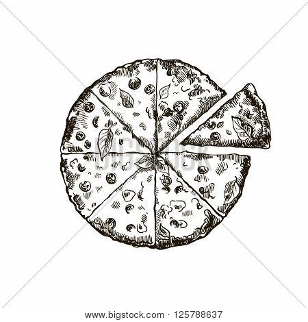 hand drawn sketch of appetizing pizza on a white background
