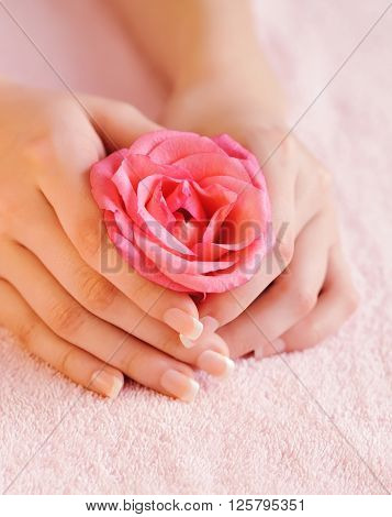 Closeup Image Of Pink French Manicure With Rose