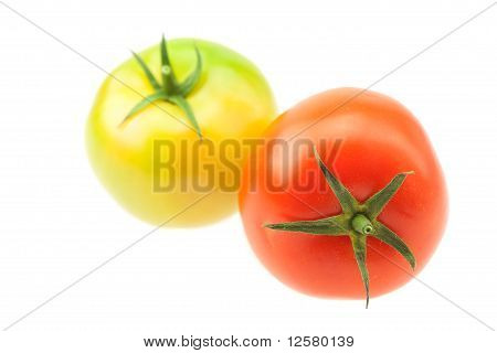 Green And Red Tomatoes Isolated On White