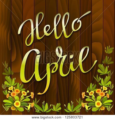 Spring hand drawn calligraphy card - hello april. Orange yellow primrose flowers, green leaves on brown wooden texture background. Floral border frame and vector lettering. Red wood boards background