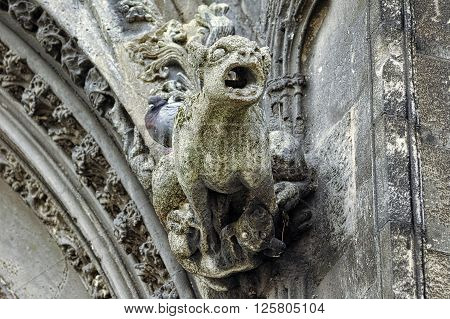 Caen (Calvados Normandy France): detail of the cathedral facade: gargoyle